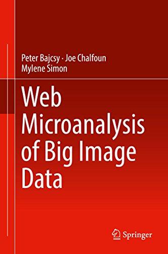 Web Microanalysis of Big Image Data