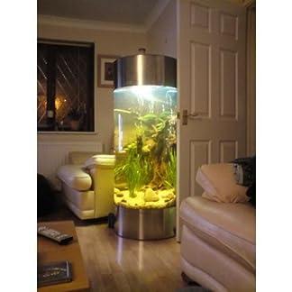 All Pond Solutions Column Aquarium Fish Tank – Stainless Steel 41lY 2BeORH9L