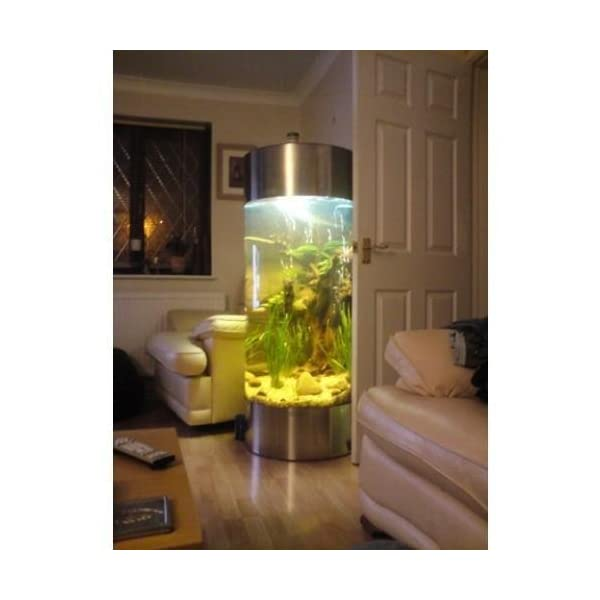 All Pond Solutions Column Aquarium Fish Tank – Stainless Steel (JYS-600-268L)