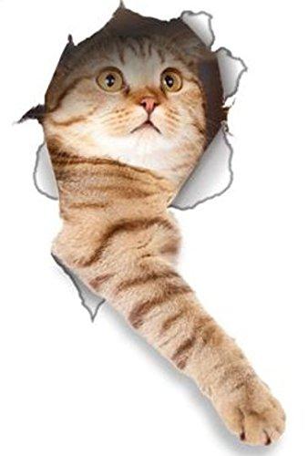 Winston & Bear 3D-Aufkleber, Katzenmotiv, für Wand, Kühlschrank, WC und mehr, 2 Stück