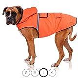 Bella & Balu Hunderegenmantel - Wasserdichter Hundemantel mit Kapuze und Reflektoren für trockene, sichere Gassigänge, den Hundespielplatz und den Urlaub mit Hund (L | Orange)