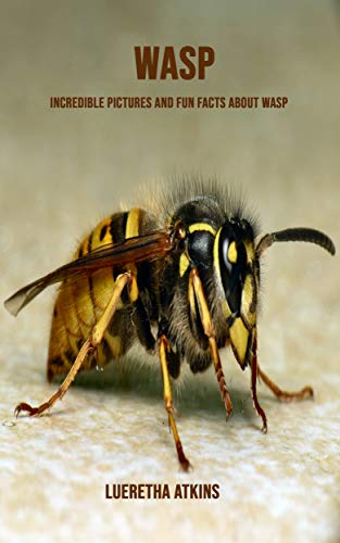 PDF Gratis Wasp: Incredible Pictures and Fun Facts about Wasp