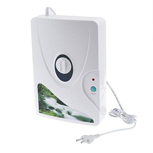 Level GL-3189A 400mg / h Ozon-Generator-Luft-Wasseraufbereitungs Nahrung-Frucht-Gemüse-Sterilisator beseitigt Geruch Weiß - Ozon-luft-generator