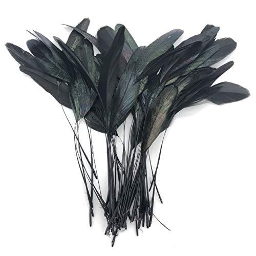 PANAX dünn Hahnfedern 100 stück, Federn Länge circa 15-20cm Schwarz (Einheit 01 Kostüm)