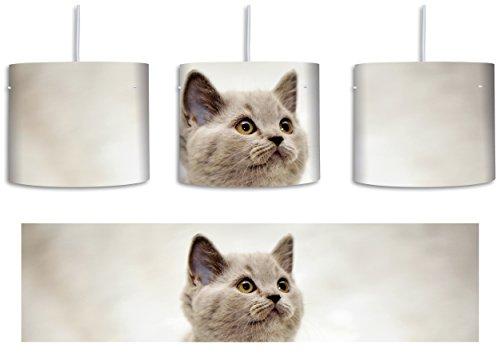 Niedliches Katzenbaby auf Teppich inkl. Lampenfassung E27, Lampe mit Motivdruck, tolle Deckenlampe, Hängelampe, Pendelleuchte - Durchmesser 30cm - Dekoration mit Licht ideal für Wohnzimmer, Kinderzimmer, Schlafzimmer