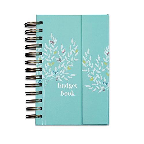budget-livre-mensuel-cette-attente-organiseur-et-livre-de-comptes-pour-suivre-des-finances-personnel