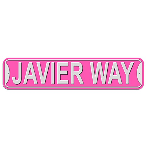 Javier Way Sign - Plastic Wall Door Street Road Male Name - Pink Test