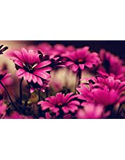 •TARQUISH HOT Pink Flower Poster PERL Metalic Non TERRABLE Paper Multicolour 13X19 INCHES