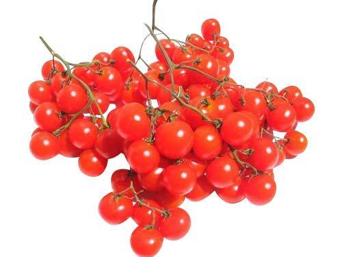 Wunder-Tomate -Riesentraube- 10 Samen