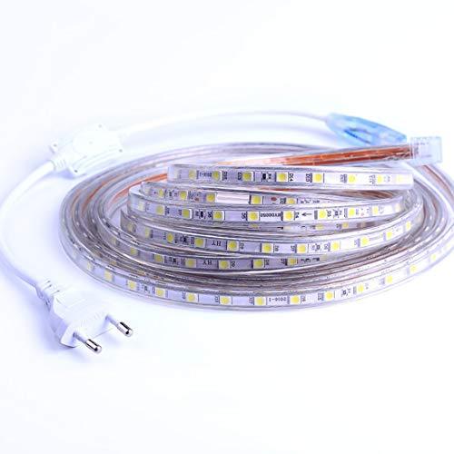 Ruban à LED, Ruban LED Etanche, Très Lumineux Bandeau Led 220v, 5050 IP65 Etanche Bande Strip Led, Blanc Froid (10m)