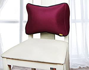 HALOVIE Air Inflatable Cushions Back Support for Car Home Office Chair Portable Pillow with Pump Removable Mesh Pillow Case 30cm*45cm*10cm