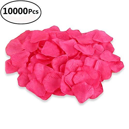 l Silk Rosenblätter Hochzeit Blumen Dekoration Künstlich Rot Rose Blütenblätter für Hochzeit Party 'Valentine Day Surprise Decor 5cm x 5.5cm Rosarot ()
