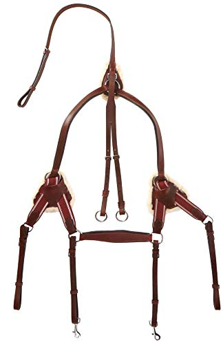 Cwell Equine NEU Leder 5Point Brustblatt + Martingal Cherry braun, XFull/Full/COB/Pony (COB)