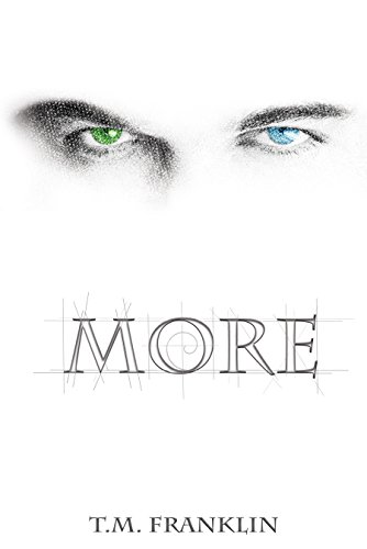 more-the-more-trilogy-book-1