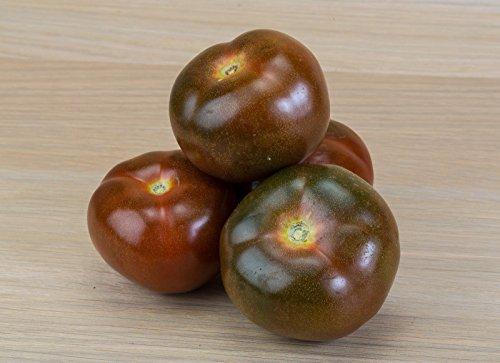 BIO Noir Graines de tomate 60 Krim ct ~ Crimée Heirloom foncé Fruits pourpres