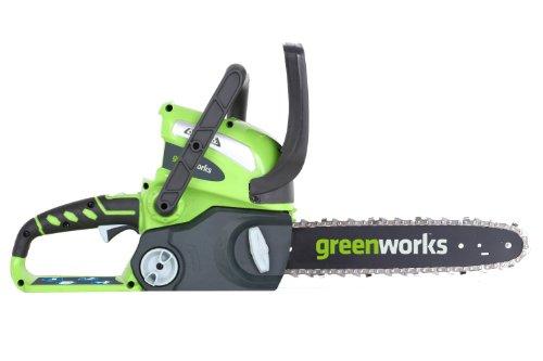 Greenworks Tools 20117 - Sierra de jardinería (40V), color: verde