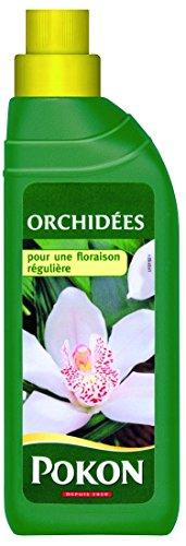 scotts-engrais-pour-plante-orchidee-gpvos-vert-79-x-5-x-225-cm-fr2976