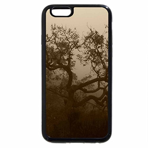 iPhone 6S Case, iPhone 6 Case (Black & White) - Oak Tree