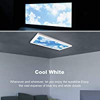 24W LED Ceiling Light, Awenia Dimmable Natural White/Daylight White(4000K-6500K) Sky Panel Light,300x600mm 2400lm Ultra-Thin Cloud Scene Recessed Lamp for Kitchen Hallway Balcony and Office