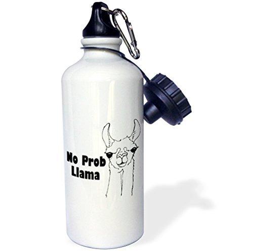 statuear-no-pro-llama-aluminio-20-oz-600-ml-deportes-botella-de-agua-regalo