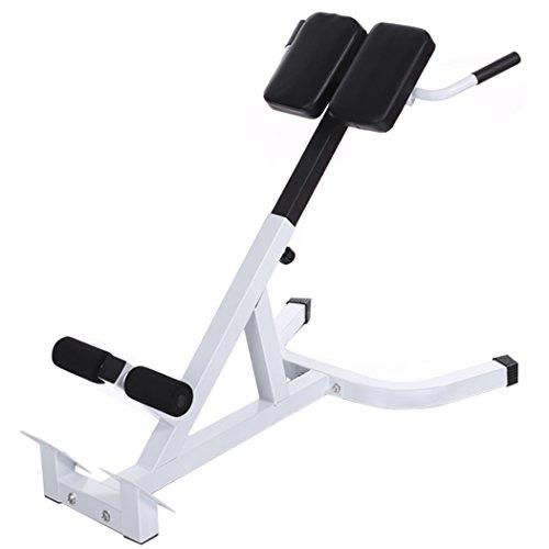 Tomasa Fitness Bauch/Rückentrainer Multifunktion Krafttraining Hantelbank Bauchmuskeltrainer Einstellbare Sitzbank Gewichtheben Länge: 110cm,Breite: 69cm (Weiß)
