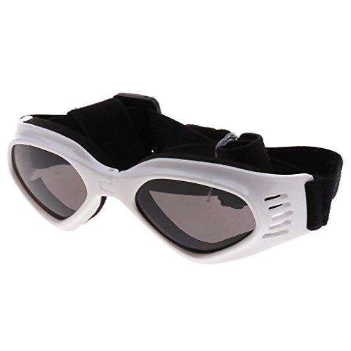 Baoblaze Hundebrille Hunde Sonnenbrille UV Augenschutzbrille Outdoor Schutzbrille für Kleine & Mittlere Hunde - Weiß
