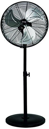 Bastilipo Tarifa Circulador de pie de 45 cm, 3 velocidades, Cabezal oscilante, 90 W, Negro