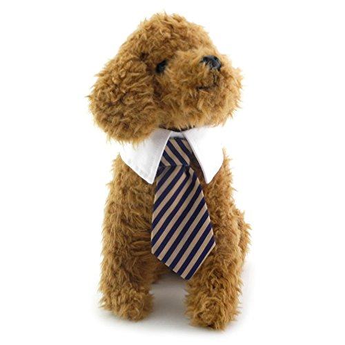 ranphy Kleiner Hund/Katze Twill Baumwolle Krawatte Kleine Hunde Katzen Welpen Krawatte Gentleman Krawatte für weibliche Stecker gestreift Krawatte (Hot Halloween Kostüme Ideen Paare Für)