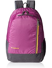 Aristocrat Pep 22 Ltrs Purple Casual Backpack (LPBPPEP3PPL)