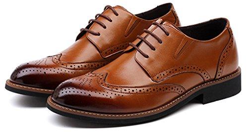 Anlarach Classic Oxford Herren Brogue Leder Braun Schwarz Schuhe Braun EU 43 (Boot Tops Beaded)