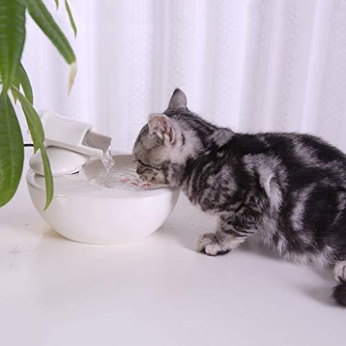 Pet Automatische Wasserspender Brunnen Katze Und Hund Filterwasser Flüsterleise Trinkbrunnen Spielzeug Keramik Dekoration Heim Kleintier Wasserschale Live-Frühlings-Trinker - Hund Brunnen Wasserschale