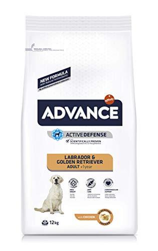 Advance Advance Pienso Perro Labrador Pollo - 12000