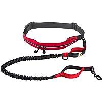 Joggingleine mit Laufgürtel von Hundefreund   Elastische Hundeleine 120 bis 180 cm für mittlere und große Hunde   Freihändig Joggen Laufen Radfahren Wandern