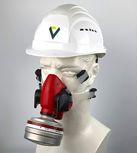 BartelsRieger Profi Atemschutzmaske + Filter/Set für Reinigungs-, Garten- und Landschaftsarbeit/Silikon-Maske + A2P3 Filter