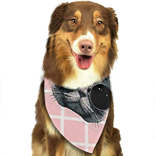 Multi Plaid Reversible Hut - Sdltkhy Cool Cat Pink Plaid Pet