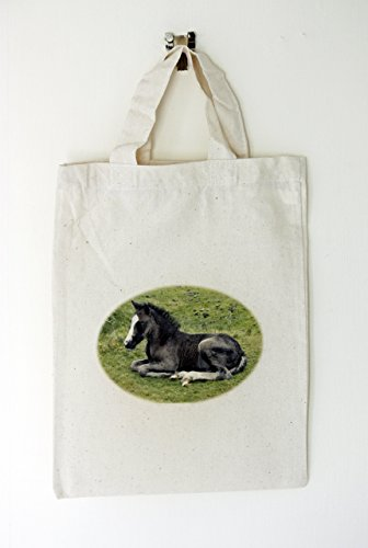 41lgkjCwTSL Small Cotton bag, New Forest Pony Motif, Party or Gift bags, Re usable (21cm x 28cm) UK best buy Review