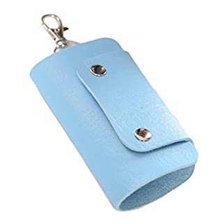 ALCYONEUS Faux Leather Key Organizer Case Bag Keychain Holder Magnetic Button Pouch Bag Gift (Blue)
