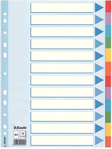 Esselte Kartonregister (Standard Blanko, A4, Karton, 12 Blatt) Mehrfarbig