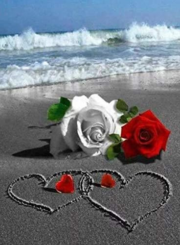 XYHJL 5D Diamant Full Malerei Weiße Rose und rote Rose Strass Crystal Foto Number Art Mosaik Craft Kits für Erwachsene Kreuzstich Stickere 40X50CM 1226 Crystal