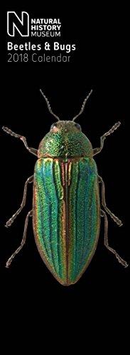 Natural History Museum Beetles & Bugs Slim Calendar 2018