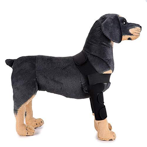 Recovery-Ärmel Hund, Vorderbein Hosenträger mit Unterstützung Hund Ellenbogen Protector Brace Hüfte und Oberschenkel Wunde Schutz (1 Stück),Black,L (Kegel ärmel)