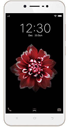 Vivo Y66 (Crown Gold) with Offers