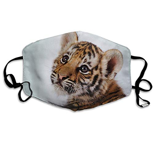 Masken, Masken für Erwachsene, Tiger Face Reusable Anti Dust Face Mouth Cover Mask Protective Breath Healthy Safety