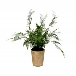 Gisela Graham Fern Faux Potted Plant