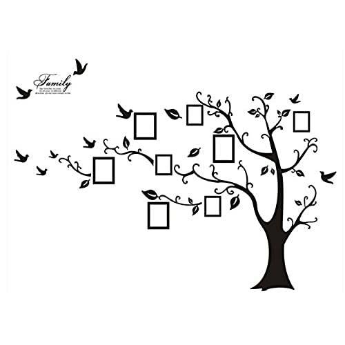 Baum Bild: Amazon.de