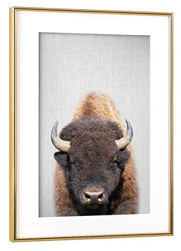 artboxONE Poster mit Rahmen Gold 75x50 cm Buffalo - Colorful von Gal Design - gerahmtes Poster -