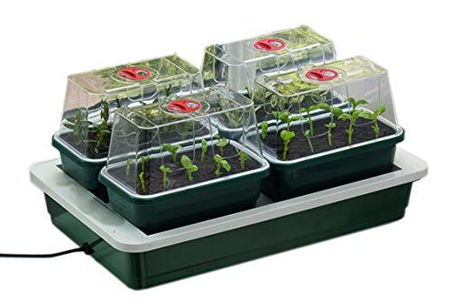 Seedeo® Mini-pépinière chauffée avec 4 petites serres + 2 litres de terreau + 2 échantillons de graines