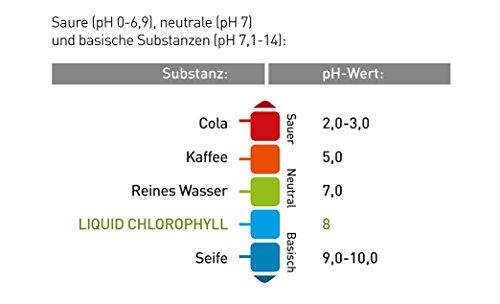Liquid Chlorophyll aus Alfalfa mit Minzgeschmack- hochdosierter Monatsvorrat -1000ml - Basisch - Flüssiges Chlorophyll - Konzentrat - Made in Germany - 3