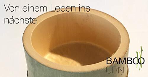 BlüthnerDesign Bamboo Urn - Bio Tierurne 2,0 Liter -