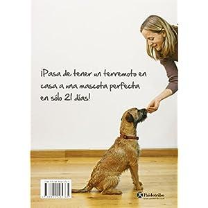 Un Perro Perfecto En 21 Días (Animales de Compañía)